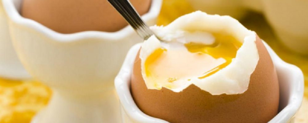 Eggs Nutrition Facts You Should Consider